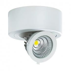 Plafony - plafon led o mocy 9w biały 4000k 750lm igor led c 03126 ideus