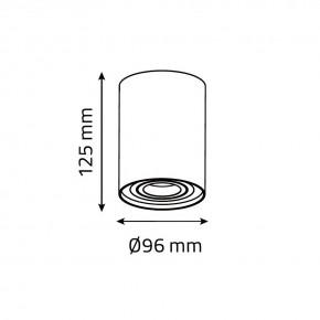 Oprawy-sufitowe - oprawa sufitowa ozzo n/t ivo 1w/w tubka regulowana biała ozzo