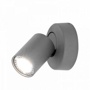Oprawy-sufitowe - oświetlenie ścienno-sufitowe cleo 1w-gr spot 1-50w szare ozzo